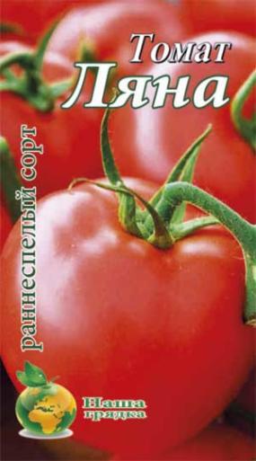 Низкорослые томаты для открытого грунта и теплиц: лучшие сорта и их особенности
