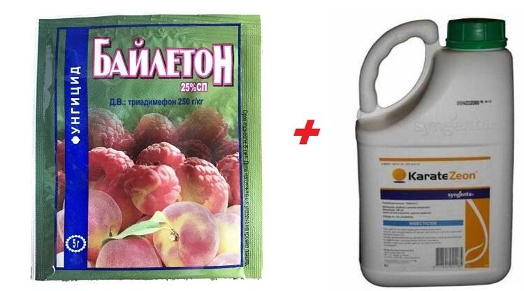 """Препараты """"Байлетон"""" и """"Каратэ"""""""