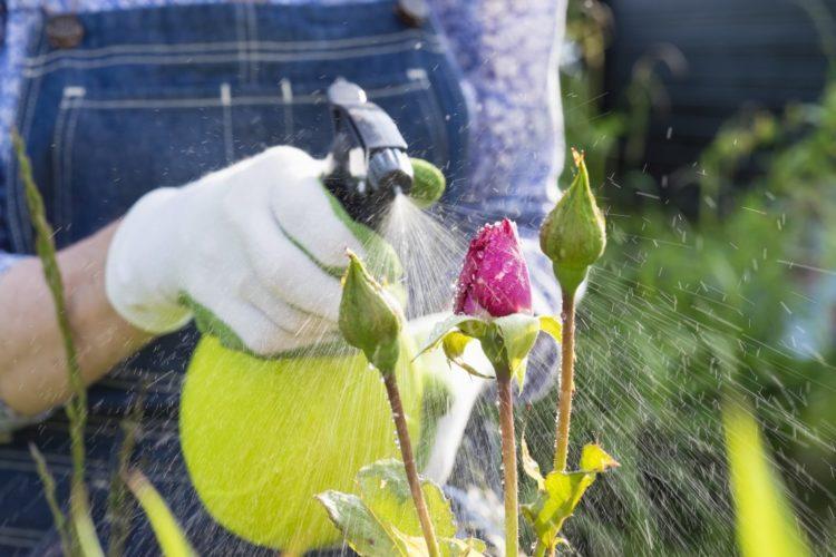 Отравление пестицидами и фунгицидами