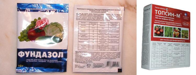 Для роз препараты для грибковых инфекций