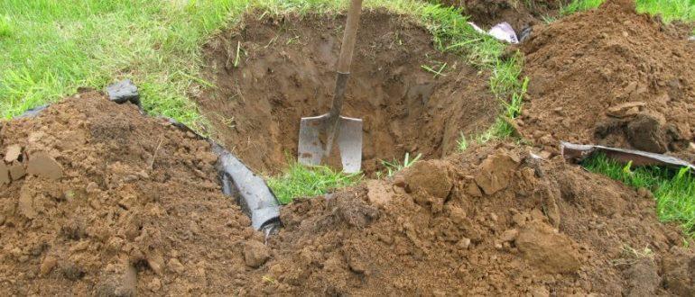 При подготовке ямы для посадки яблони удобнее верхний перегнойный слой убирать в одну сторону, а нижний, неплодородный - в другую